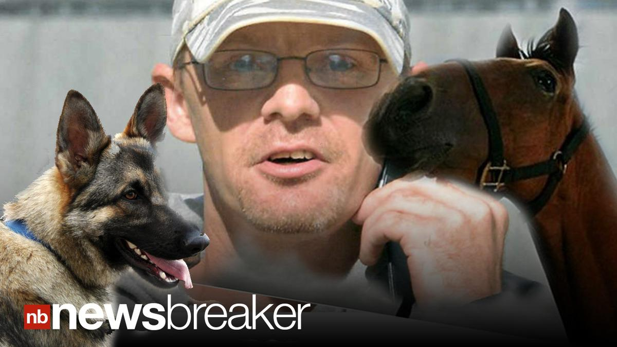 animalsex src ANIMAL SEX: Man Admits to Sex with Two Dogs, Horse; Banned from Owning Pets