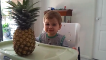Babies Be Scared Of Pineapples...