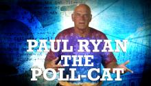 Paul Ryan: The Poll-Cat