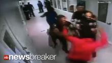 Cop Investigated for Excessive Force After 14 Year Old Punched