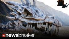 GAME OF BONES: Fake Dragon Skull 'Washes Up' on Beach in Great Britain