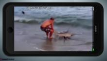 SHARK WRESTLING!: Fisherman Wrestles 7 Foot Long Shark... and Wins!