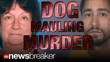 MAULING MURDER: California Man Arrested After His Pit Bulls Maul a Woman to Death