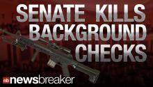 "Senate Shoots Down Background Checks; Shouts of ""Shame on You!"""