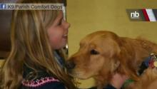 Comfort Dogs Help Out In Newtown, CT