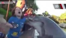 Caught On Tape: Sea World Dolphin Bites Girl