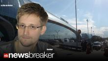 SNOWDEN'S ASYLUM: NSA Secrets Leaker Leaves Moscow Airport; Gets One Year Asylum in Russia