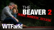 THE BEAVER ATTACKS: Upstate New York Beaver Attacks Kayaker. No, Not THAT Kind of Beaver. The Other Kind. Sickos.