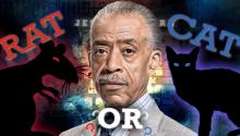 Al Sharpton: A Rat or a Cat?