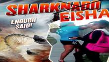 SHARKEISHA!: Girl Takes the Internet By Storm After Vicious Attack Caught on Tape