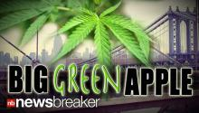"BIG ""GREEN"" APPLE: New York State Could Become Third in Nation to Legalize Marijuana"