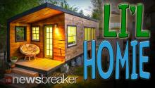 TINY HOUSE: Woman Builds $11,000 Dream Home in just 196 Square Feet