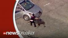"""Mama Bear"" Takes Matters Into Her Own Hands After Carjacker Crashes Into Her Minivan"