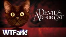 DEVIL'S AD FOR CAT: A Japanese Company Advertises With A Giant Pettable Cat Head
