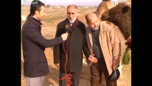 When The Camel Says The Interview Is Over, THE INTERVIEW IS OVER