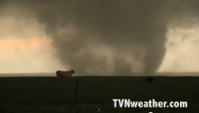 These Cows Have Zero F***s To Give About This Massive Tornado