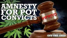 #WWJVD: Amnesty for Pot Convicts