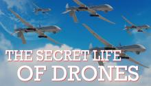The Secret Life of Drones
