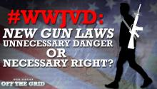 #WWJVD: New Gun Laws - Unnecessary Danger or Necessary Right?