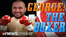 GEORGE THE BOXER: Zimmerman Says He Will Take Part in a Celebrity Match