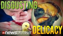 DISGUSTING DELICACY: Controversial Fertilized Duck Eggs Getting Worldwide Attention