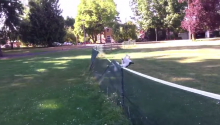 See Spot. See Spot Run. See Spot Front-Flip Over A Fence.