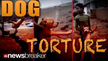 DOG TORTURE: Two Teens Arrested After Facebook Video Shows Them Abusing a Puppy