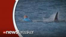 Surfer Fights Off A Shark Attack On Live TV During South Africa Competition