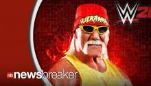 Hulk Hogan Loses WWE Contract After Investigation Reveals Racist Comments in Video