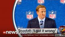 "NFL Commissioner Roger Goodell Talks Ray Rice Incident, Vows to ""Do Better"""