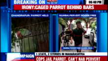 Indian Police Arrest Parrot, Can't Catch Actual Criminal