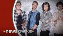 Fans Hilarious Reactions to One Directions' Hiatus Announcement Go Viral