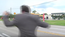 News Reporter Chased By Wasp