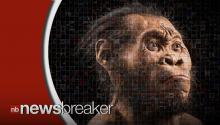 New Species Related to Humans Found in South African Cave