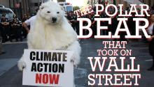 The Polar Bear Who Took on Wall Street