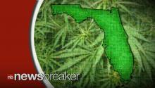 Marijuana Advocates Campaigning to Legalize Pot in Florida
