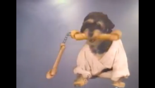 This 1980s Karate Rap Music Video Is Our New Religion