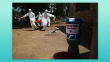 What Caused The Ebola Epidemic?