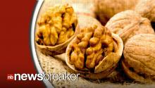 Study: Walnuts May Help Prevent Alzheimer's Disease