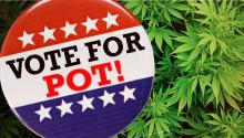 Vote For Pot!