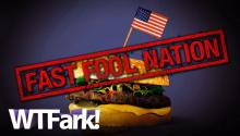 FAST FOOL NATION: Who Are McDonald's Customers? Pretty People? Naked Big Chested Lunatics?