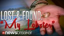 "LOST AND FOUND: Unique ""My Lobster"" Wedding Ring Discovered in Santa Barbara, Returned to Owner Two Years Later"